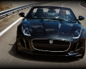 2014-jaguar-f-type-8